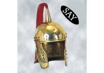 Wagenlenker Helm