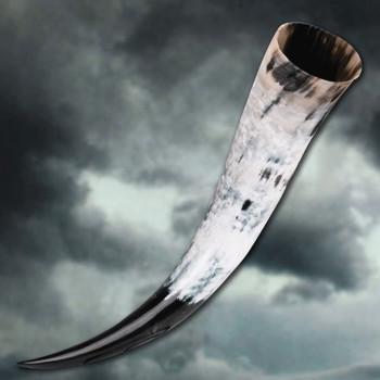 Trinkhorn von Odin